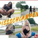 Josy-Black – PISSSCHLAMPEN  on the country road. MDH.